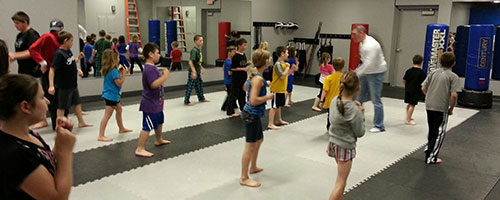 Kid's Martial Arts Fest